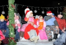 Brantford Santa Claus Parade November 29 2008_19