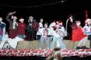 Brantford Santa Claus Parade November 29 2008_21
